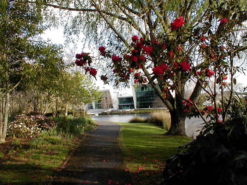 campus2.jpg